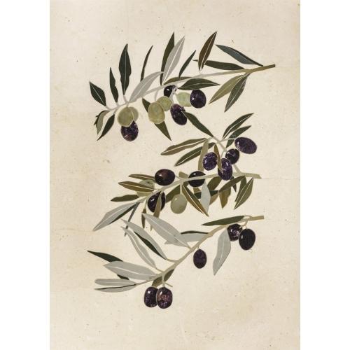 Ramoscello d'olivo toscano